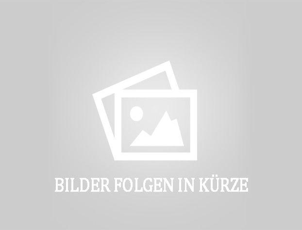 BT-RR B7 / 15-Schubmaststapler-http://www.herbst-gabelstapler.de