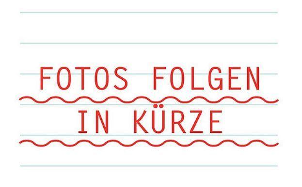 Still-EXD 20-Doppelstockstapler-www.fiegl-gabelstapler.de